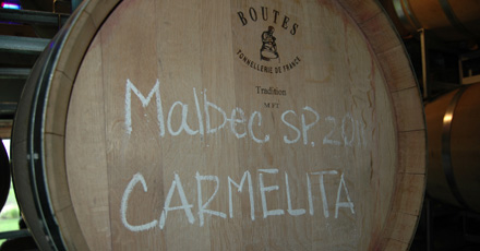 New kid on the block - an update on Carmelita Malbec 2011