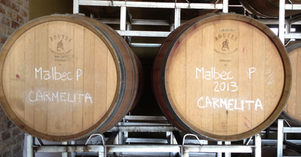 Off season ongoings at the winery - winter update from Mendoza